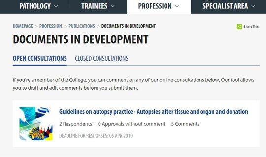 How to add comments to a consultation
