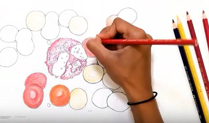 Incredible You colouring in activity