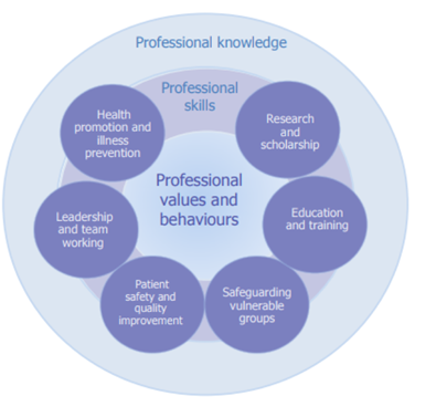 Map of Generic Professional Capabilities