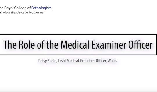 The Role of the Medical Examiner Officer (MEO)