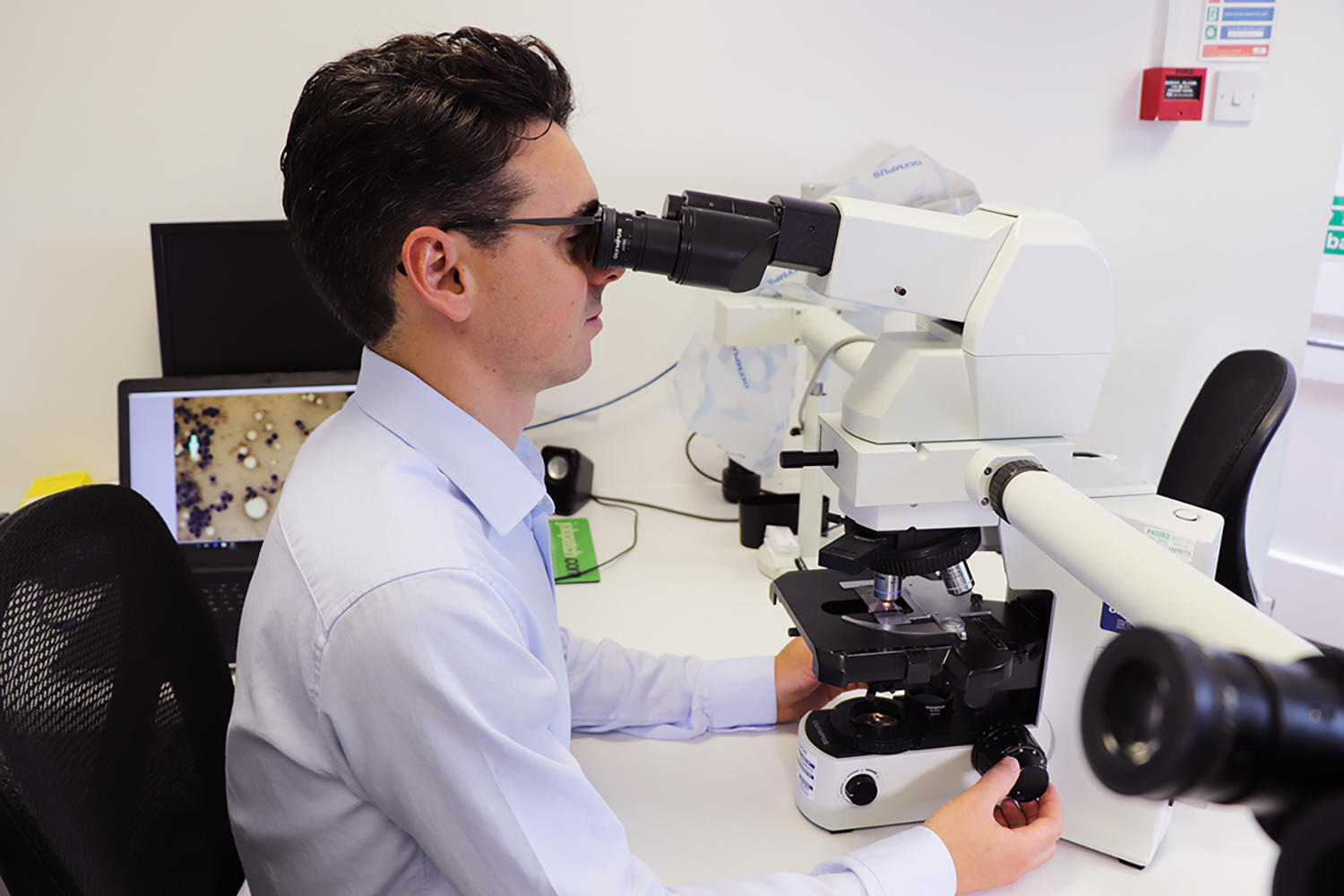 Alex Civello uses his microscope to diagnose issues such as iridociliary adenoma, a benign tumour like the one found in Crumble's eye